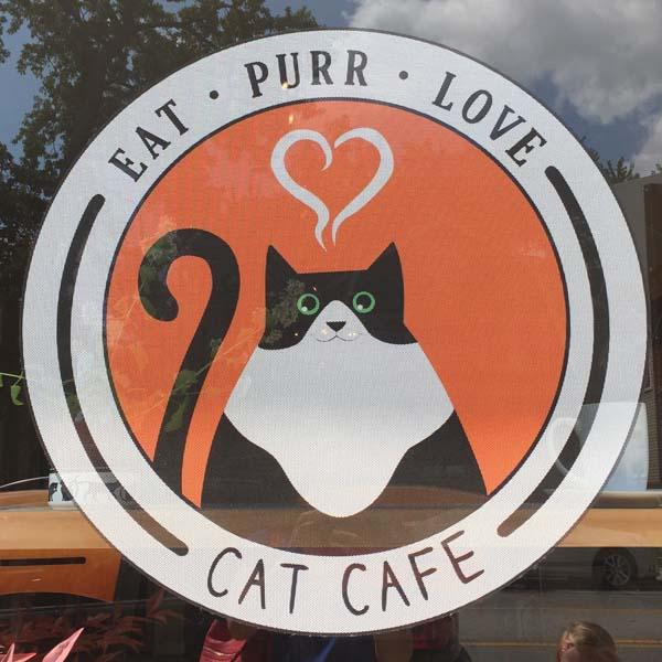 Columbus Oh Cat Cafe